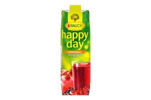 Нектар Happy Day гранат