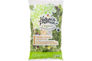Nature's Promise Organic Chopped Salad Kit Classic Caesar