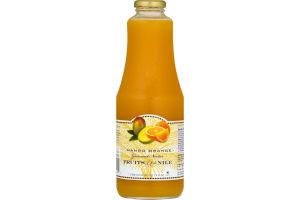Fruits of the Nile Mango Orange Gourmet Nectar