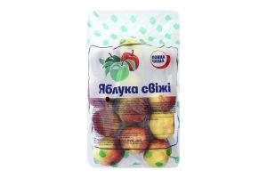 Яблоки Повна Чаша свежие