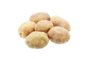 Картопля 1 гат