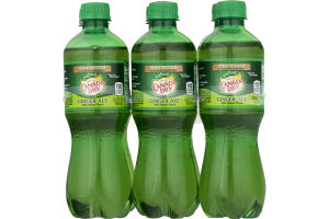 Canada Dry Ginger Ale - 6 PK