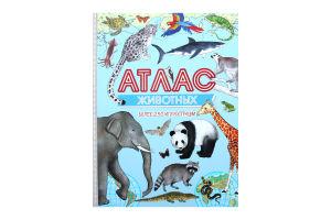 Книга Атлас тварин Пеликан