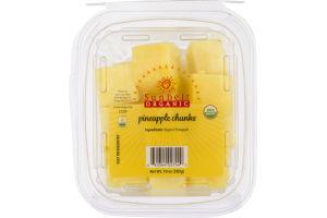 Sunbelt Organic Pineapple Chunks