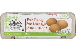 Nature's Promise Free Range Fresh Brown Eggs Large Grade A - 12 CT