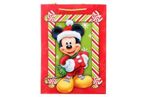 Пакет паперовий Disney 30x41х12см