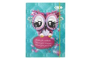 Папка для тетрадей ZiBi Owl В5 14980