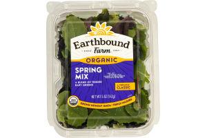 Earthbound Farm Organic Spring Mix