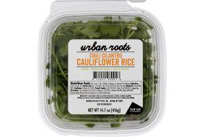 Urban Roots Cauliflower Rice Chili Cilantro
