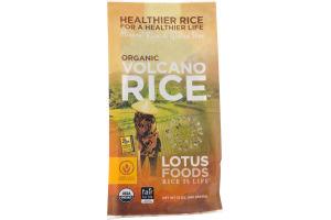 Lotus Foods Organic Volcano Rice