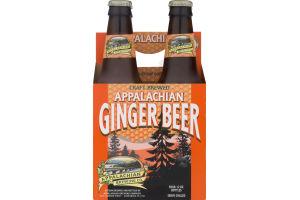 Appalachian Brewing Co. Appalachian Ginger Beer - 4 PK