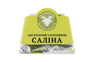 Сир 59% козячий з пліснявою Саліна Еко Карпати кг