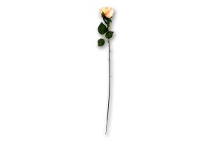 Цветок искусственный Роза в ассортименте D*1