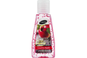 CareOne Antibacterial Hand Sanitizer With Moisture Beads Country Apple