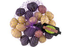 Urban Roots Confetti Pee Wee Potatoes