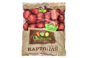 Картопля Овочиста 5кг