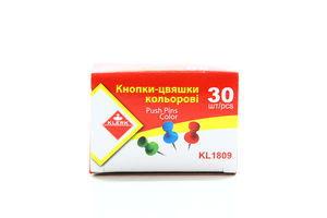 Кнопки Klerk цвяшки 30шт KL1809