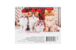 Календар 2021 №DP004 До столу Студія Марко 1шт