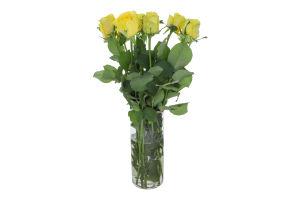 Рослина Троянда 50см Пенні Лейн 5шт