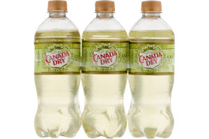 Canada Dry Sparkling Green Tea Ginger Ale - 6 PK