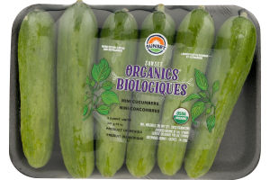Sunset Organic Mini Cucumbers - 6 CT