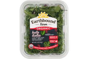 Earthbound Farm Organic Kale Italia