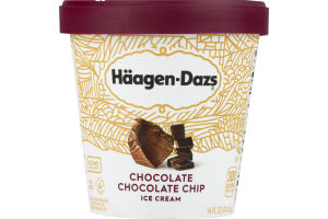 Haagen-Dazs Ice Cream Chocolate Chocolate Chip