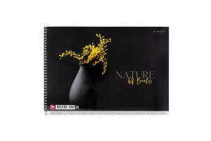 Альбом для малювання А4 40 аркушів №PB-SC-040-294 Школярик 1шт