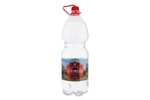 Вода минеральная сильногазированная Рогатинська п/бут 2л