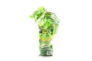 Базилік зелений Пучок-Свіжачок