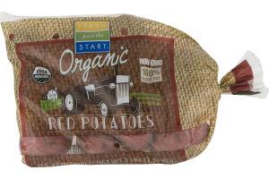 Fresh from the Start Organic Red Potatoes
