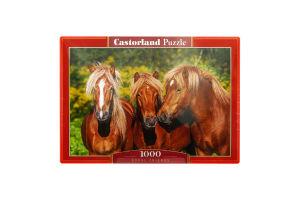 Пазл №2389 Castorland 1000ел
