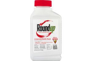 Round Up Weed & Grass Killer