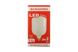 Лампа світлодіодна Economka LED ZP 20W E27 4200K 1шт
