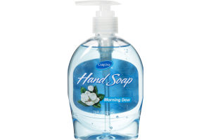 CareOne Hand Soap Morning Dew