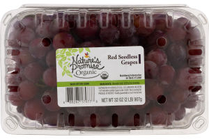 Nature's Promise Organic Grapes Red Seedless