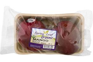 Spring Leaf Organic Mango