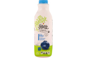 Nature's Promise Organic Kefir Blueberry
