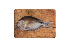 Рыба Хирург охлажденная