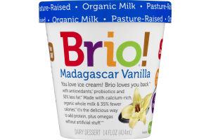 Brio! Dairy Dessert Madagascar Vanilla