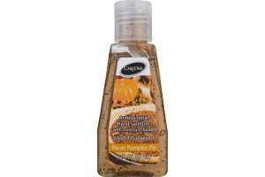 CareOne Antibacterial Hand Sanitizer with Moisture Beads Pecan Pumpkin Pie