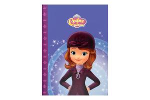Книга для детей от 3лет Магический конкурс Небесные гонки София Прекрасная Disney Egmont 1шт