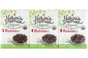 Nature's Promise Organic Raisins - 6 PK