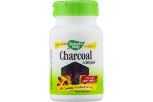 Nature's Way Charcoal - 100 CT