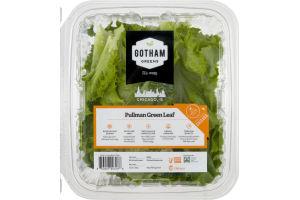 Gotham Greens Pullman Green Leaf