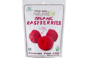 Natierra Freeze-Dried Nature's All Foods Organic Raspberries