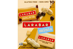 Larabar Mini Bars Variety Pack - 10 CT