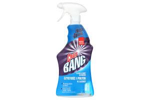 Средство чистящее Чистота и блеск ванной комнаты Cillit Bang 750мл