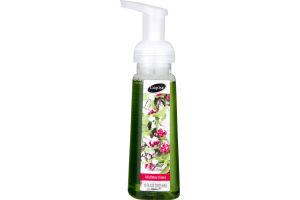 CareOne Foaming Hand Soap Mistletoe Kisses