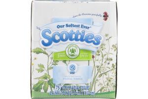 Scotties Facial Tissue 2-Ply